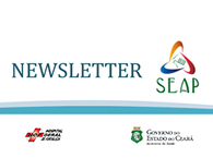 Newsletter SEAP
